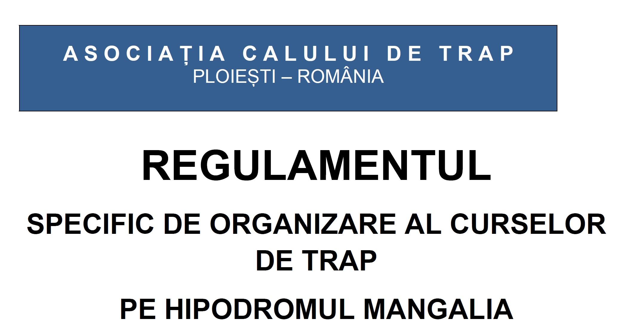 regulament